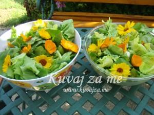 Zelena Neven salata