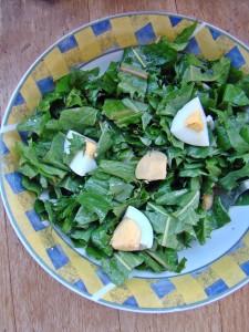 Salata od maslacka (2)